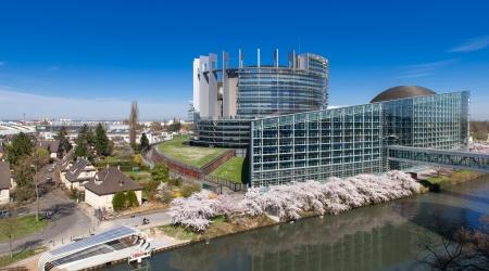 Le Député Michel Lauzzana réagit aux résultats des élections européennes